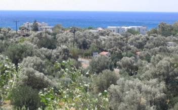 picture of pag145 Level plot with sea view within walking distance of popular beach