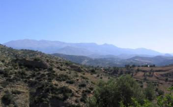 picture of pag167 Large hillside plot with olive trees in a quiet valley near Agia Galini