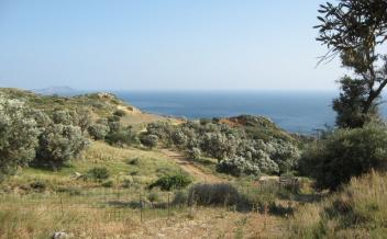 picture of pps186 Level village plot with sea view at Agia Paraskevi