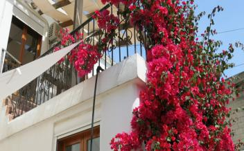 picture of vkam219 In Kamilari, south Crete, renovated two bedroom village stone house